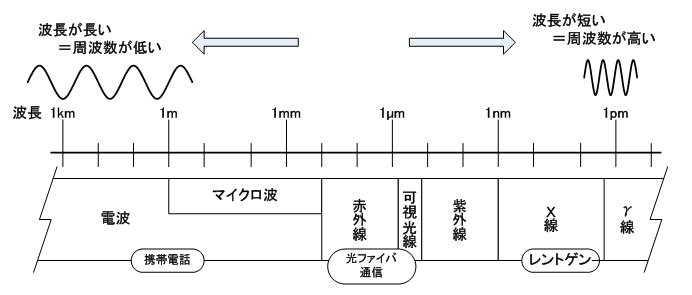 コラム図2